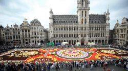 Brüksel'in Grand Place Meydanı Latin Motifli Çiçek Halıya Bezendi