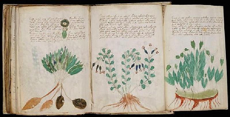 Voynich Elyazması – Bilinmeyen Bir Yazıyla Yazılan ve  Anlamı Çözülemeyen Gizemli Kitap