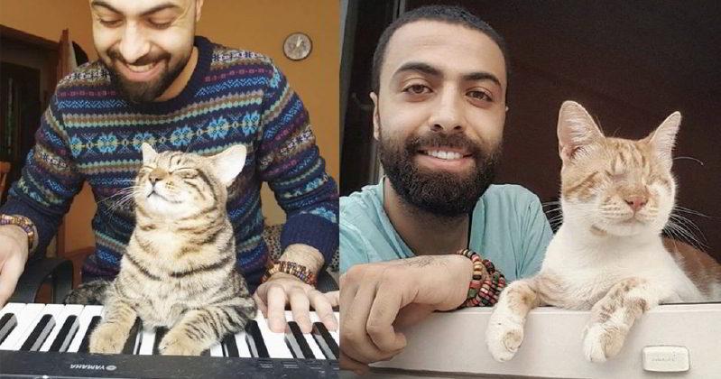 Kedileri Tedavi Ettirmek İçin Piyano Çalan Kedisever Piyanist Sarper Duman