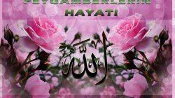 Kur'ân da Peygamberler