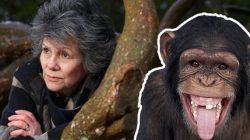 Maymun kadın Marina Chapman