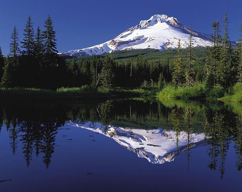 Okyanus iklimi (Oregon)