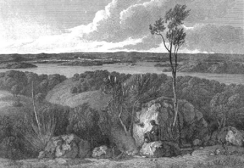 Sidney şehrinin kurulduğu, Port Jackson'ın güney kesiminden bir görünüm.