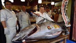 278 Kiloluk Dev Ton Balığı 3 Milyon 100 Bin Dolara Satıldı