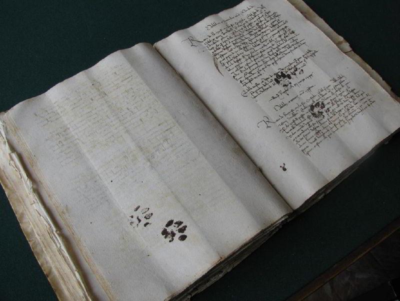 Günümüzde Klavye Üzerinden Geçen Kediler Ortaçağ'da El Yazmaları Üzerinden Geçiyormuş
