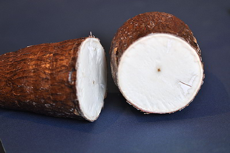 Manyok – Cassava