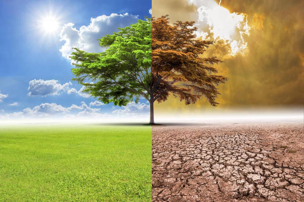 Bolivya  iklimi