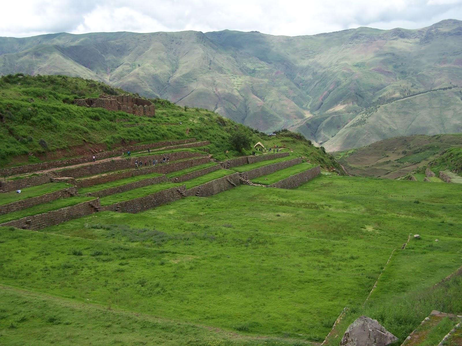 Bolivya  Tarımı