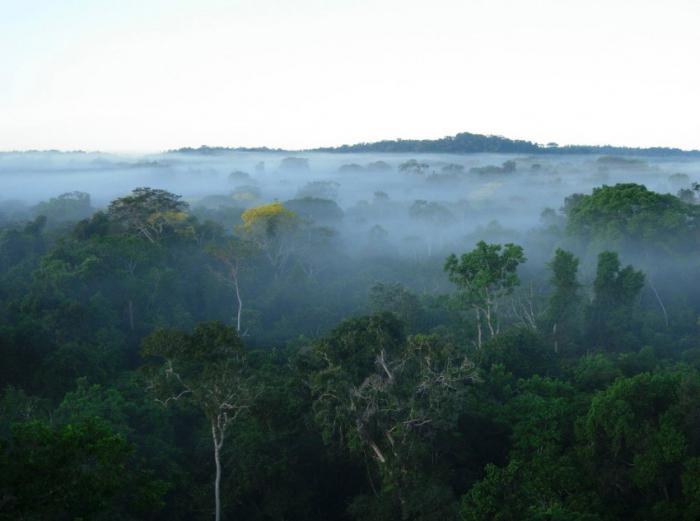 Brezilya iklimi