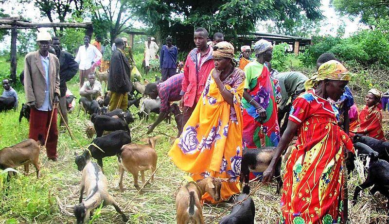 Burundi vatandaşları