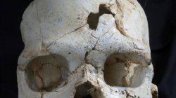 Tarihin En Eski Cinayet Kurbanı Bulundu (430 Bin Yıllık)