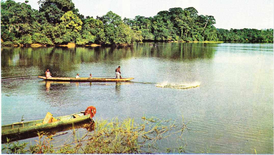 Gabon'da bir nehir