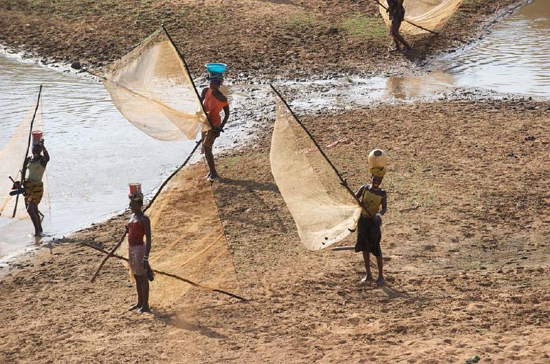 Doğu Gine'deki Nijer Nehri, Niandankoro, Kankan Bölgesi'ndeki Malinke kadın balıkçıları