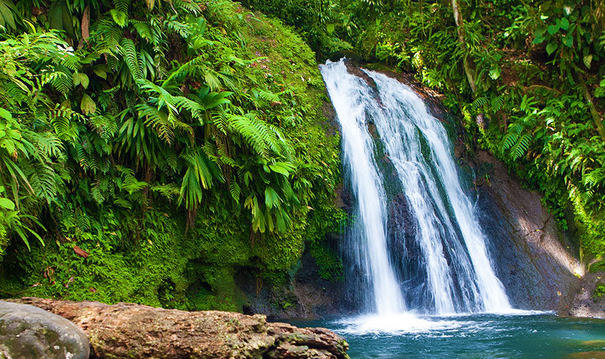 Grenada iklimi