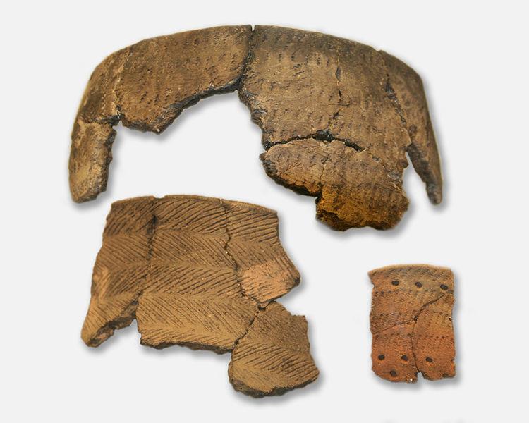 Estonya'da bulunan Yeni Taş Çağı'ndan kalma çömlek parçaları