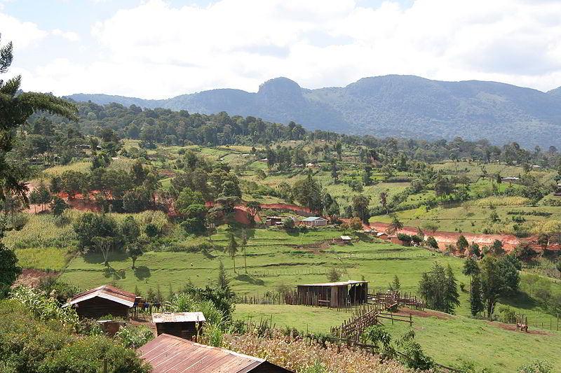 Kenya'da tarımsal alanlar