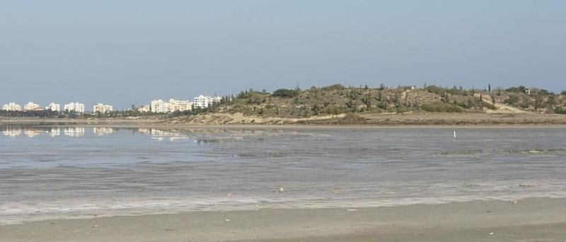 Larnaka  Tuz  Gölü