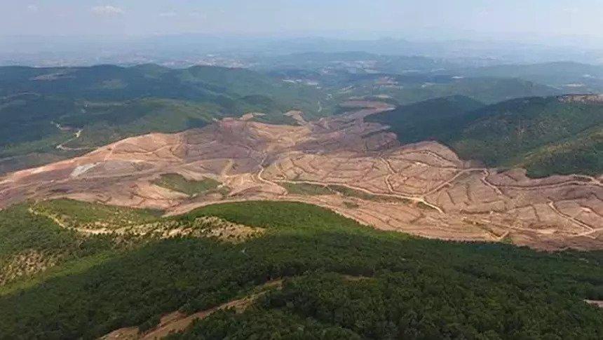 Çanakkale'de Altın Madeni İçin 195 Bin Ağaç Kesildi