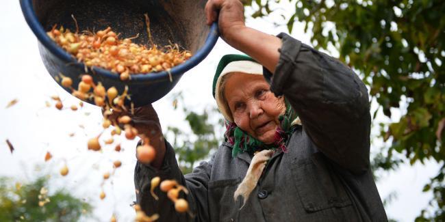 Moldova  kültürü