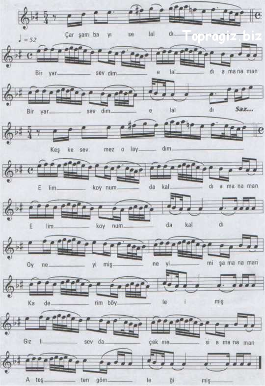 258.jpg