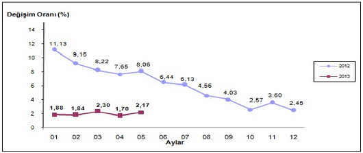 2013 Mayıs Ayı Enflasyon Oranları