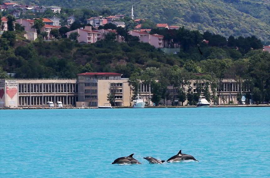 https://www.topragizbiz.com/img/images/istanbul-yunusc5c392fe6e9012e9.jpg