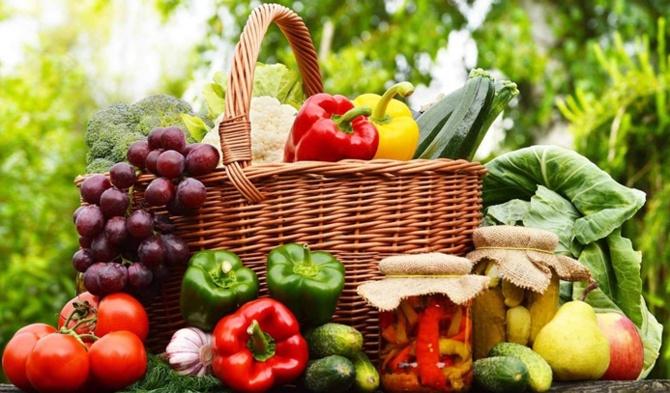 Organik tarımda sürdürülebilirlik ve gübreleme