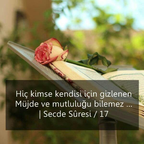 SECDE Suresi Türkçe Okunuşu ve Tefsiri
