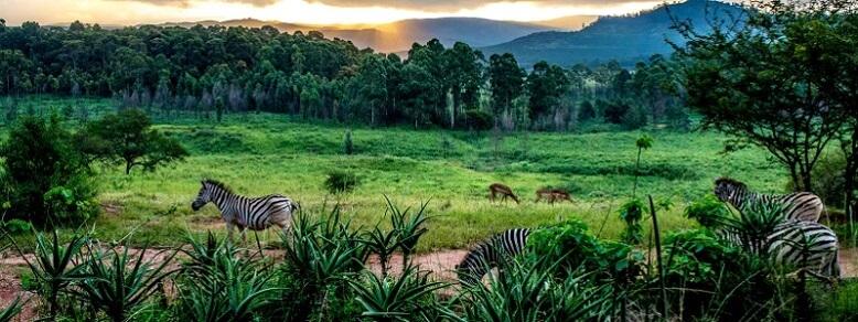 Esvatini Krallığı ( Svaziland )