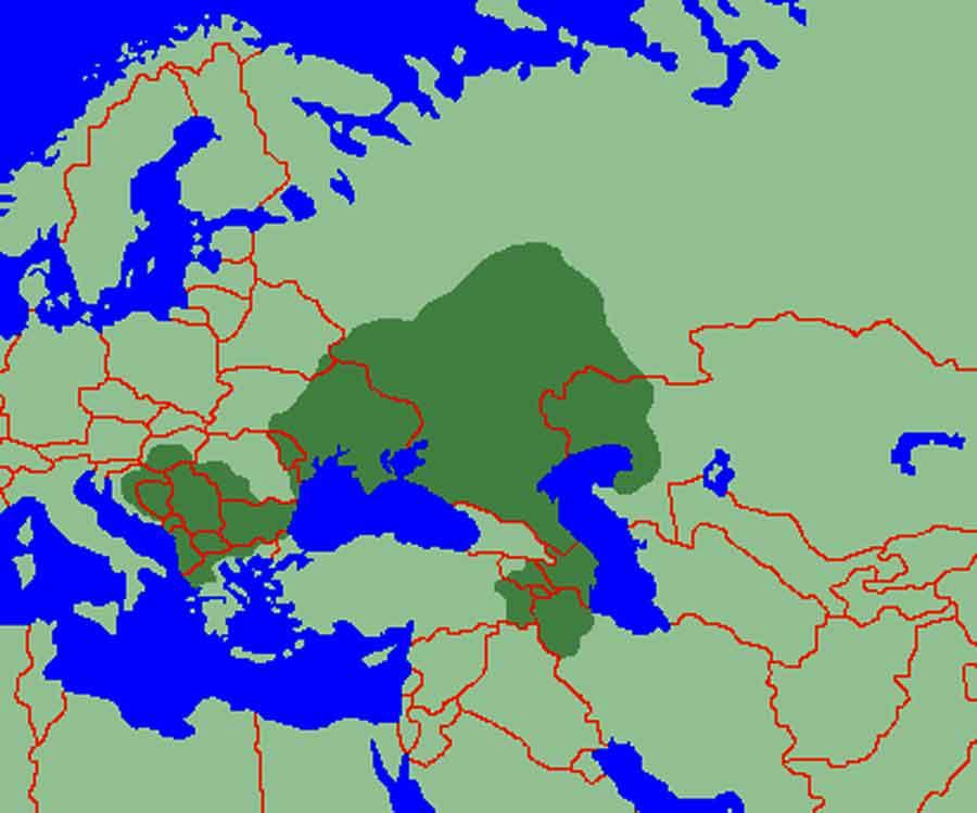 İtil - Volga Bulgar Devleti (700 - 1237)