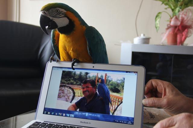 Turgut Özal'ın Papağanı Cabbar Turgut Özal'ı Unutamıyor