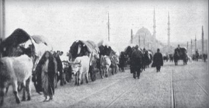 Balkanlardan gelen Osmanlı mültecilerin İstanbul'a girişleri (1913)