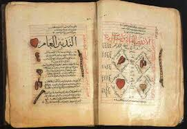 İbn-i Sina Eseri