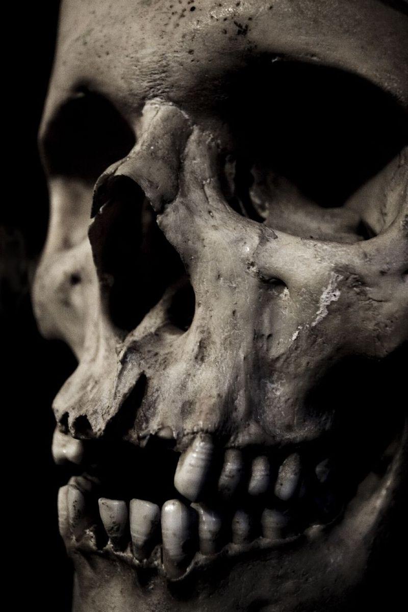 Kafatası, ölüm ve çürümenin sembolü olarak kullanılır.