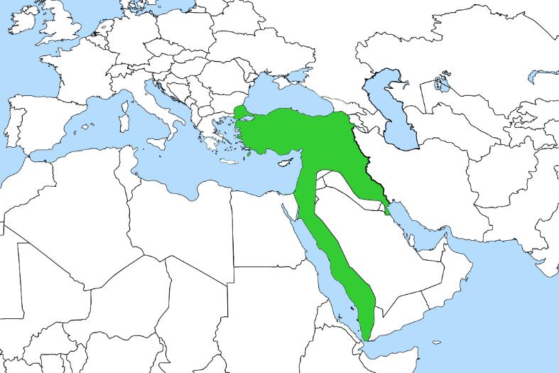 Büyük Harbe Girerken İmparatorluk Türkiyesi