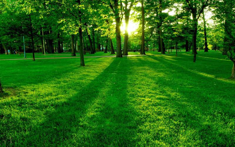 Güne neşeli mutlu başlamanın sırrı?