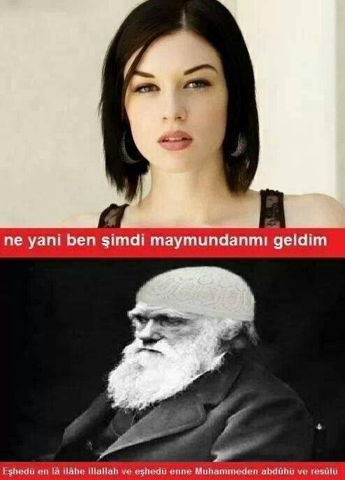 Darwin ve Evrim