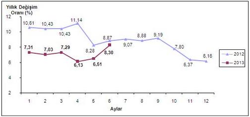 2013 Haziran Ayı Enflasyon Oranları