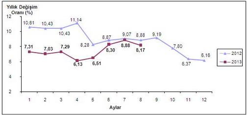 2013  A�ustos Ay� Enflasyon Oranlar�