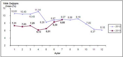 2013 Temmuz Ayı Enflasyon Oranları