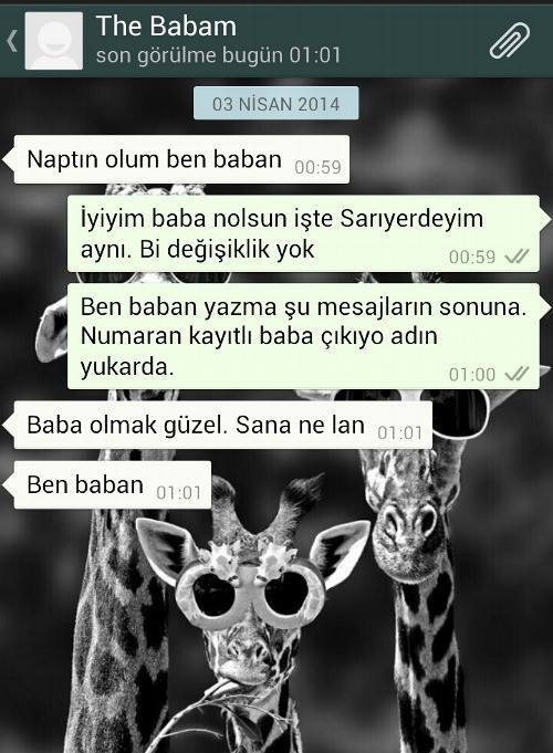 The Babam