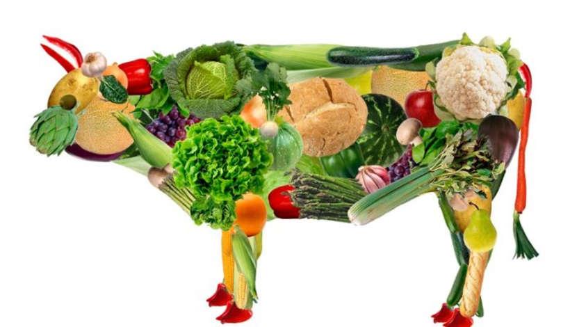 Veganizm (Veganlık) Nedir?